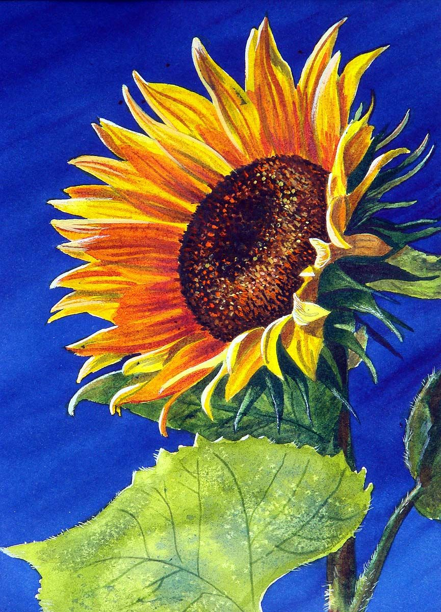 easy sunflower paintings google search colors