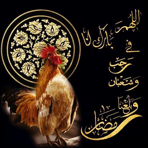 اللهم بارك لنا في رجب و شعبان و بلغنا رمضان Islamic Art Islam Ramadan