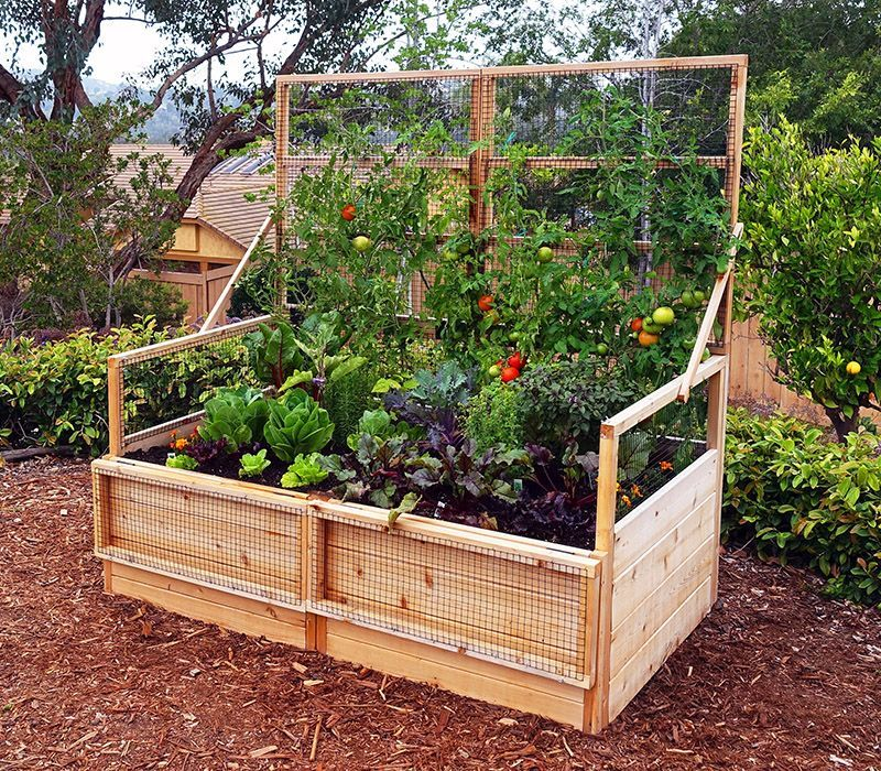 3'x6' Convertible Raised Garden Bed is part of Cedar raised garden, Garden beds, Cedar raised garden beds, Raised garden, Home vegetable garden, Diy garden bed - What a clever garden  the lid doubles as a trellis! Also, the hinged front panels can fold down for easy access to the plants and soil