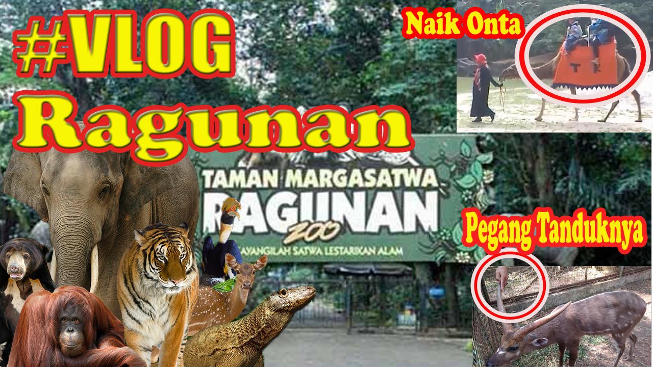 Kebun Binatang Ragunan Website