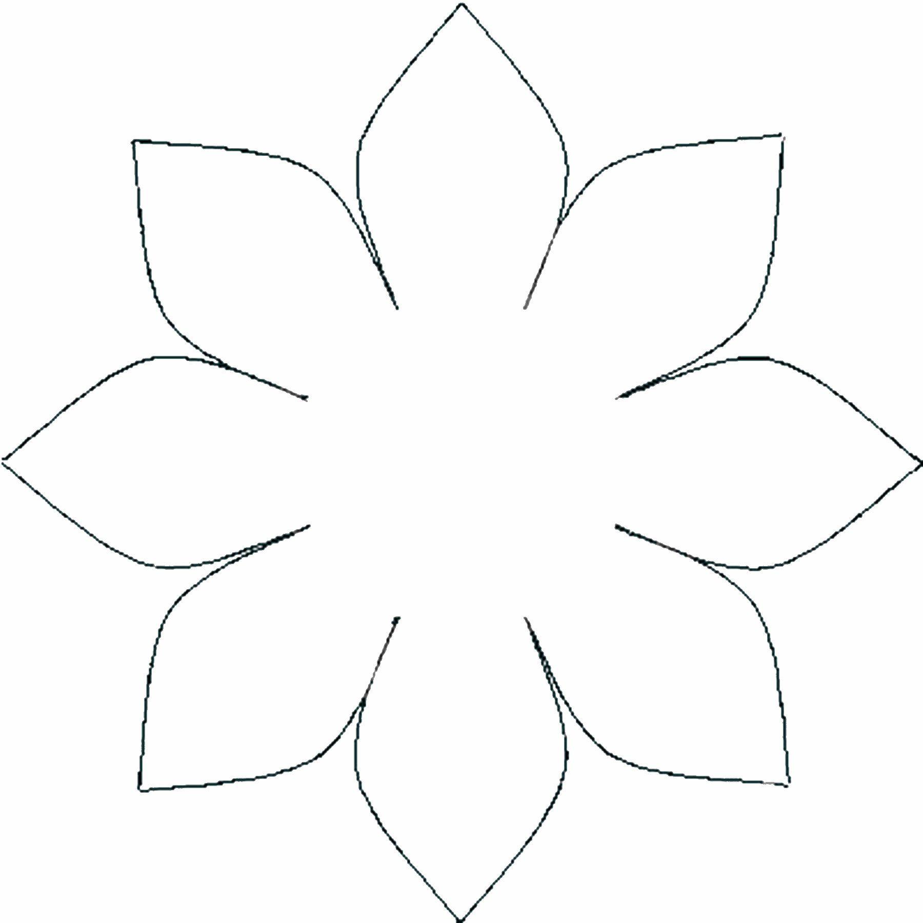 יום הולדת לילדים | אין עוד אתר כזה!!! | flowers-paper4 ...