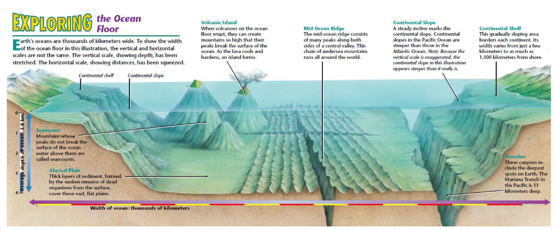 cycle 1, week 18, science great diagram of the ocean floor and ocean life zones diagram great diagram of the ocean floor and lesson plan on oceans