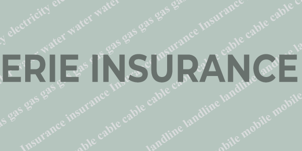 Erie Insurance Payment Online With Images Paying Bills Erie