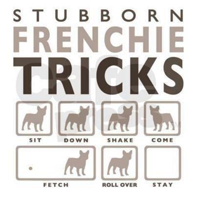 Frenchie tricks- so true!