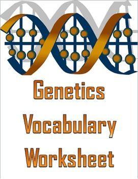 Genetics Vocabulary Worksheets | Elly Thorsen's Middle ...