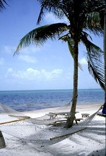 florida keys coco plum beach just looks like fun bon bon s rh pinterest com
