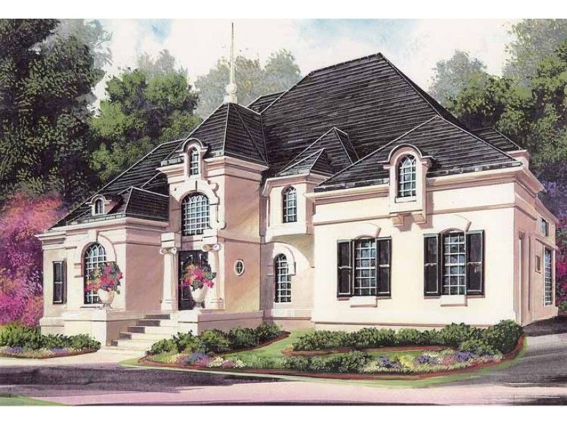 House Chateau Style 2 story 4 bedroomss