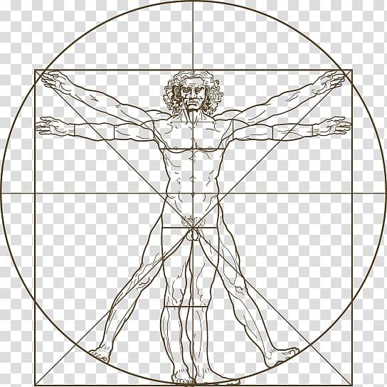 Vitruvian Man Drawing Man Transparent Background Png Clipart Vitruvian Man Mini Drawings Clip Art