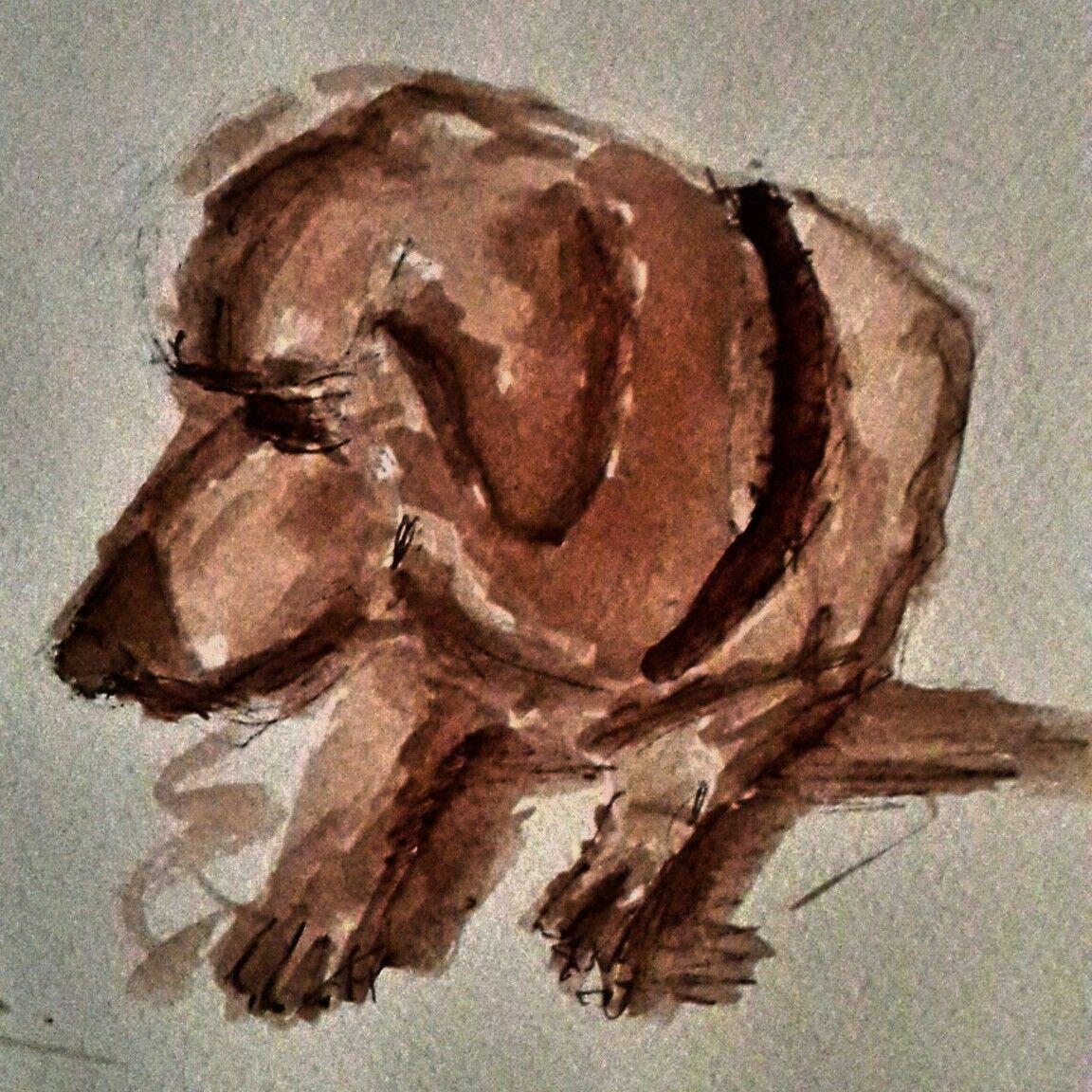 perro sepia