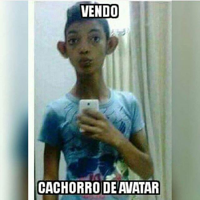 c30b67080ef38f92a42e6c8d343db7b6 comediaguate en facebook) guatemalteco guatelinda chapines