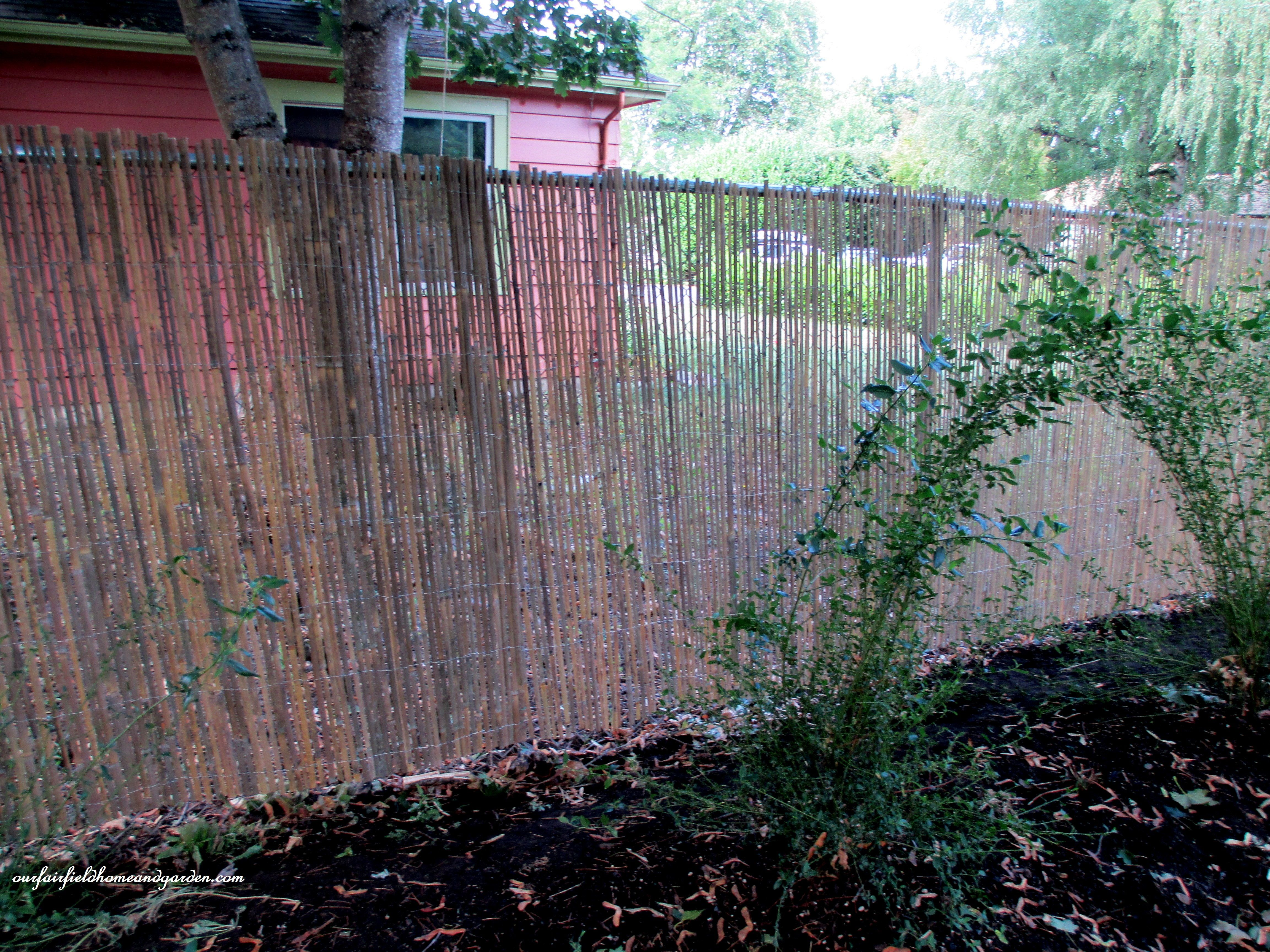 After Five Foot High Chain Link Fence Is Softened By The