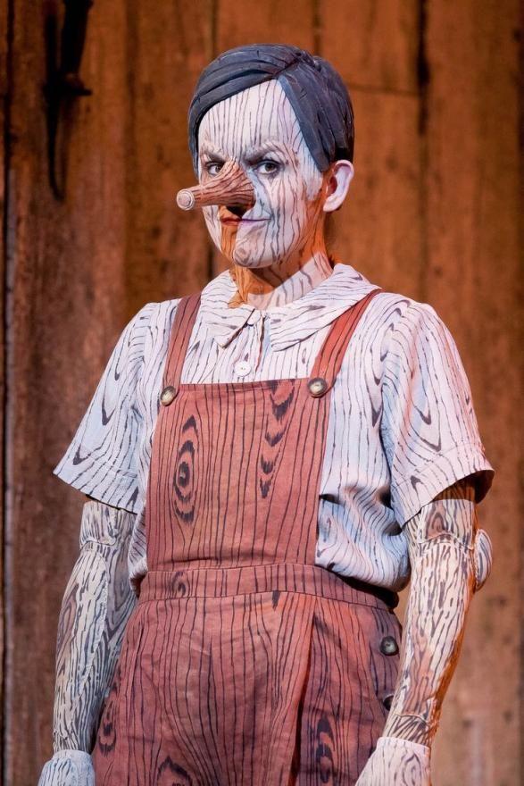 Homemade Pinocchio Costume Ideas Show stuff Pinterest - halloween costumes with beards ideas