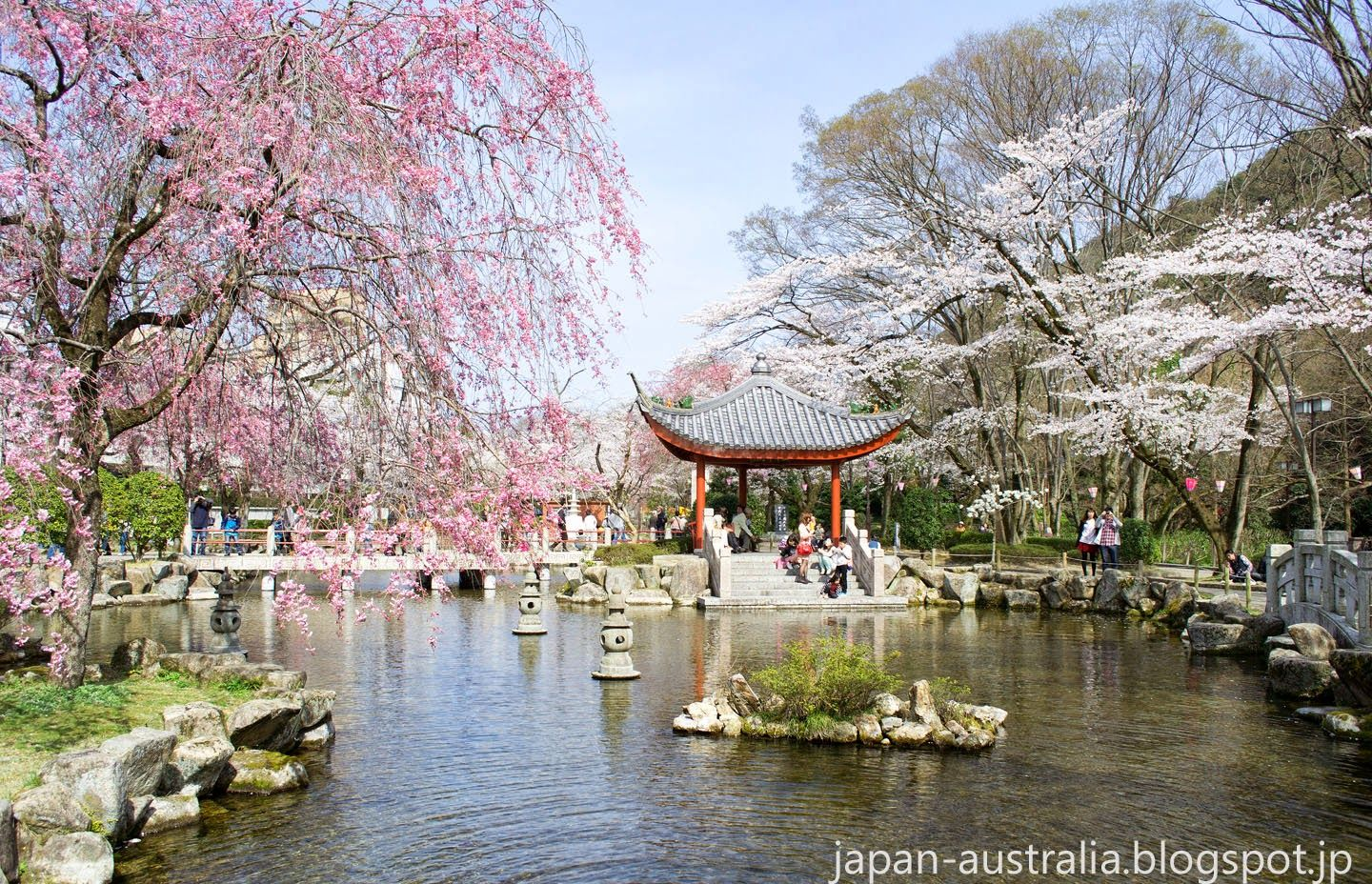 Cherry Blossom In Japan China Friendship Garden Gifu Gifu Cherry Blossom Japan Chinese Garden
