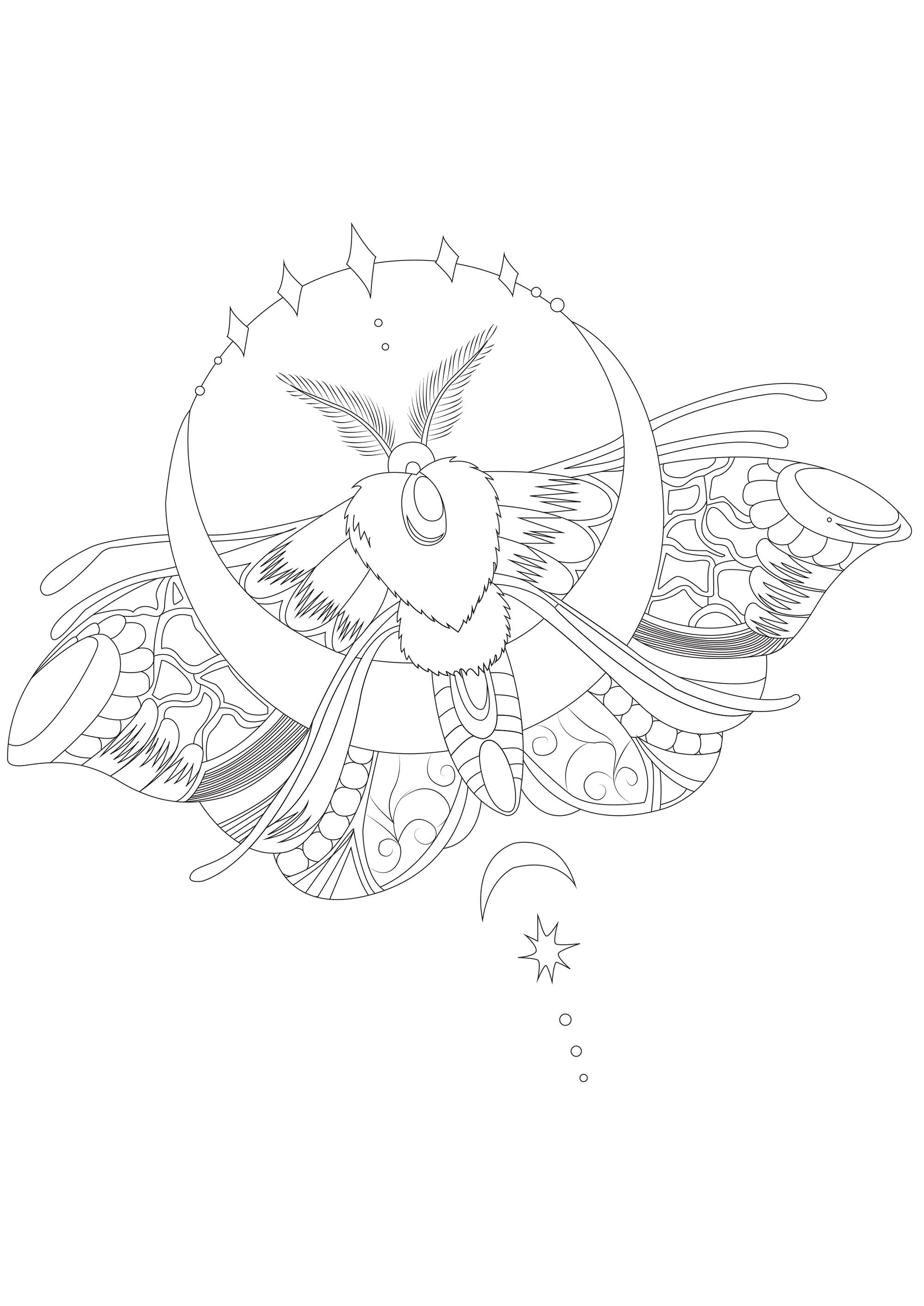 Night Butterfly Moth Butterflies Insects Coloring Pages For