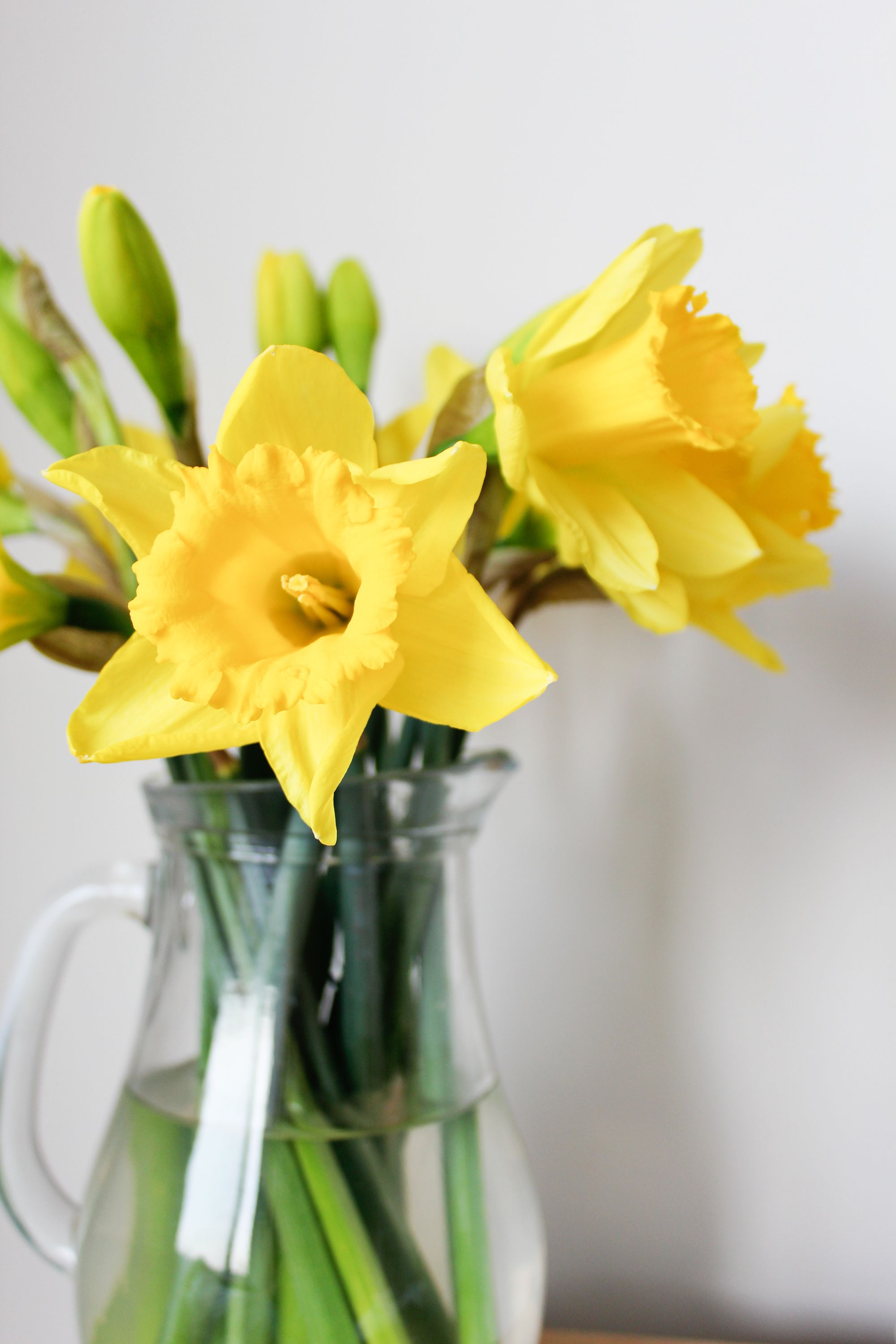 Spring-daffodils-in-a-glass-vase---Beak-Up-Crafts