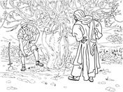 Barren Fig Tree Parable Coloring page | Sunday school ideas ...