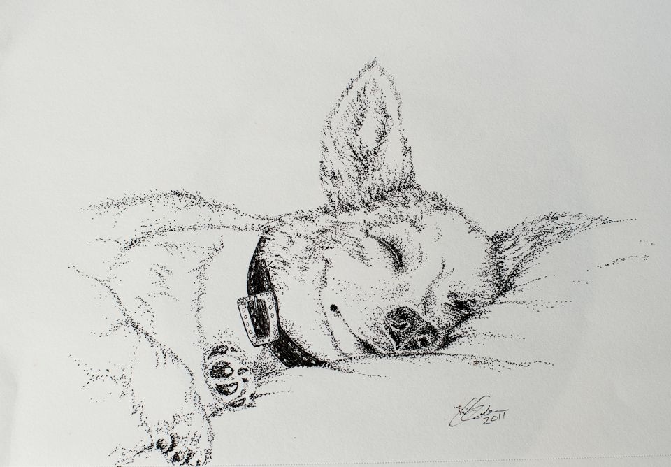 Easy Line Drawings Of Animals : Image result for easy pointillism black and white stippling