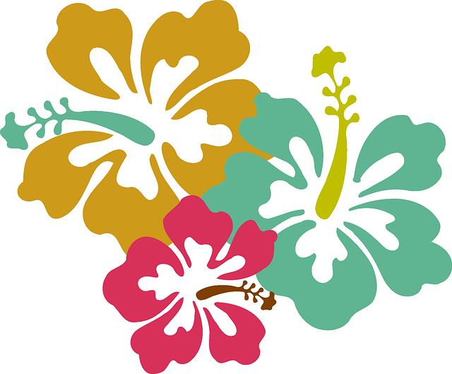 Fiori Hawaiani Disegni.Immagine Gratis Su Pixabay Fiore Ibisco Rosa Giallo Blu