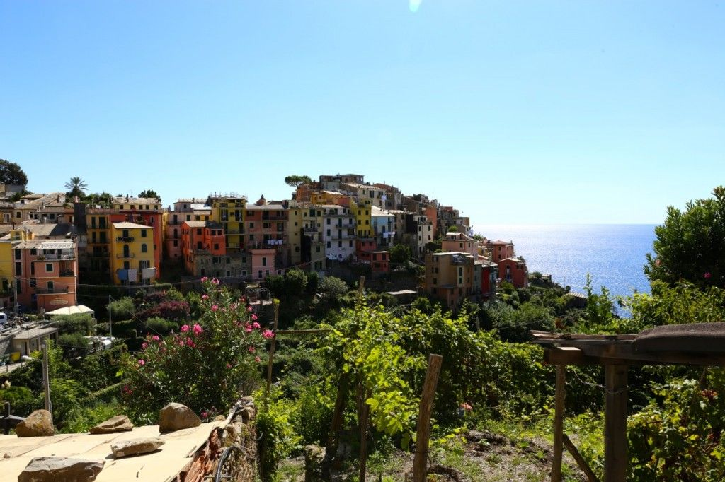 Discover Cinque Terre in Italy with The Macadames - A beginners guide for everything you need to know about visiting this amazing part of the world!