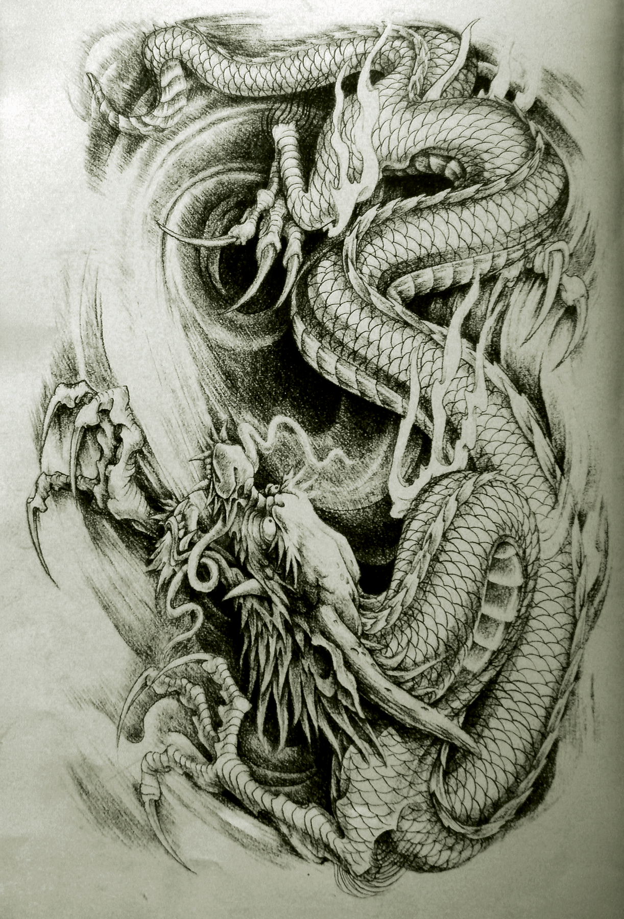 best dragon tattoo drachen dragon tattoos pinterest. Black Bedroom Furniture Sets. Home Design Ideas