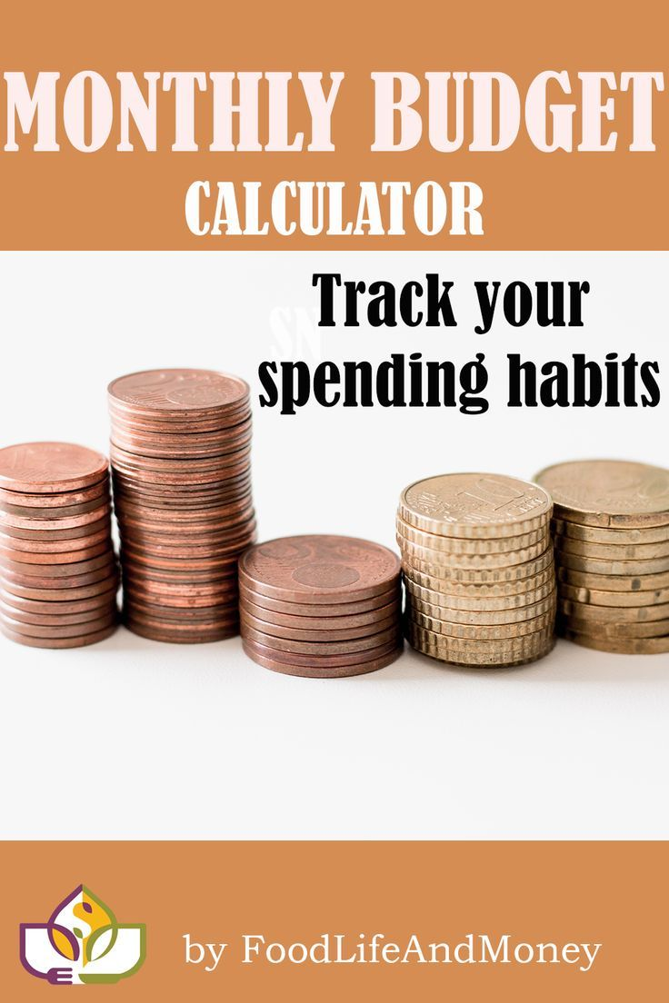 Keep track of your income and expenses using our budget ...