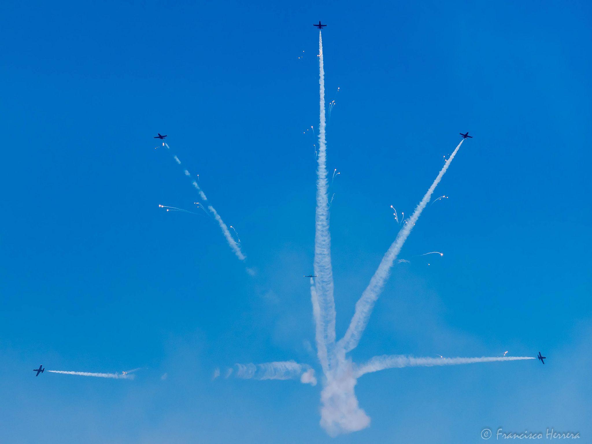 Breitling Jet Team Air show, Fort lauderdale, Jet