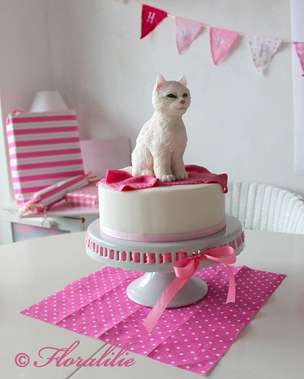 We found photos of cute cat cakes cat cupcakes and cat cake pops