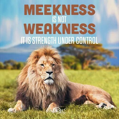 Image result for meekness is not weakness