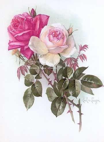 Quatang Gallery- China Ivory Red Roses Delongpre Vintage Bloemen Rozen En Kleurplaten