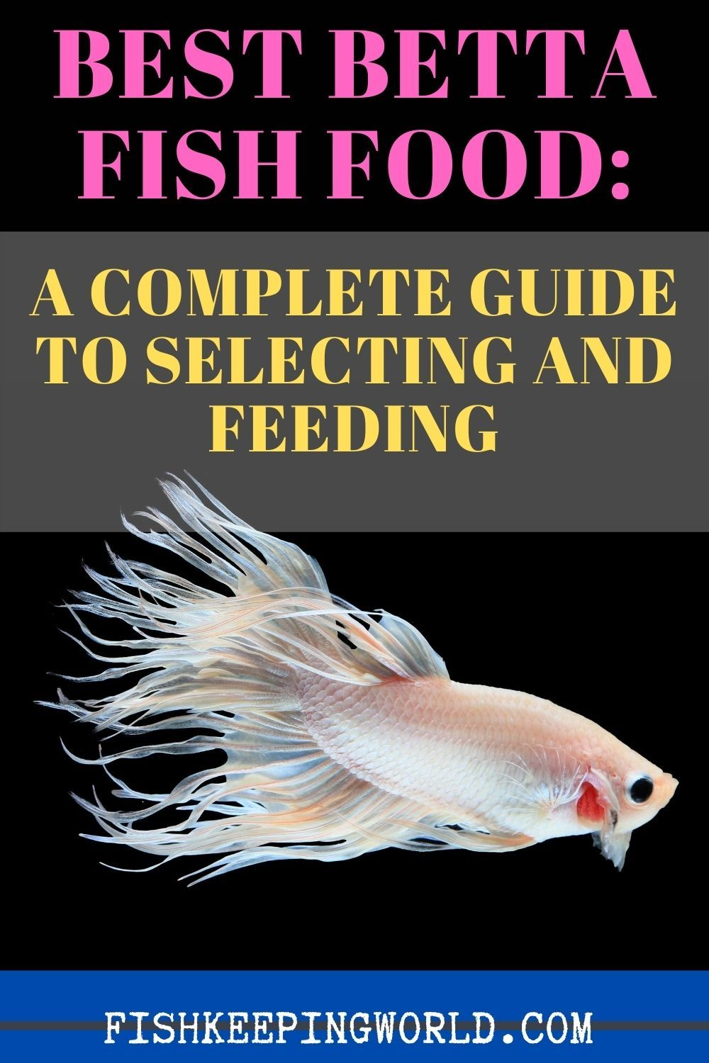Wondering What Are The Best Betta Fish Food How Do You Know Which Foods Are Better How Often Should You Feed Them Will They Re Fish Recipes Betta Fish Betta