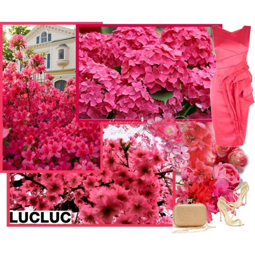 Lucluc.com by asia-12 on Polyvore featuring polyvore fashion style Ivanka Trump