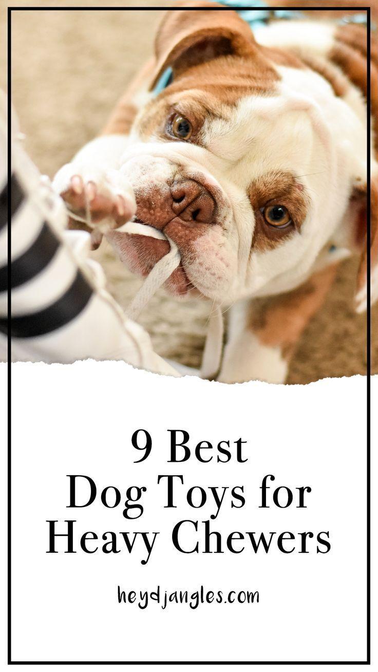 9 Best Dog Toys for Heavy Chewers -  9 BEST DOG TOYS FOR HEAVY CHEWERS – heydjangles.com – indestructible dog chews toys, best dog t - #chewers #dog #DogAccessories #DogBeds #DogClothesPatterns #DogClothing #DogCoats #DogCollars #DogDresses #DogHarness #DogLeash #DogSupplies #DogToys #heavy #PetDogs #Toys