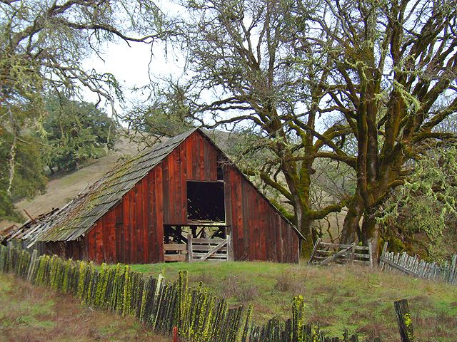 along Highway 20 between Fort Bragg and Willits, CA
