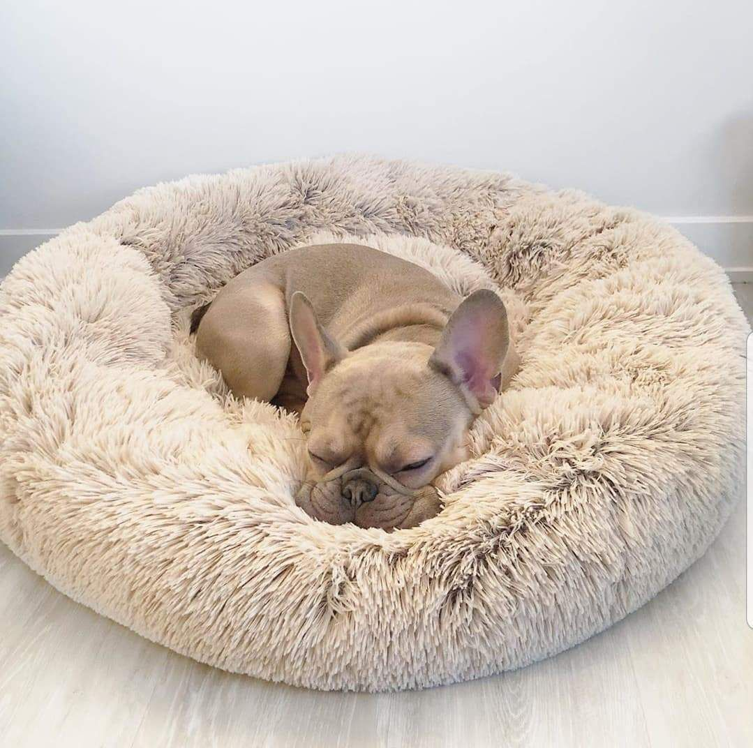 Dog Calming Bed™ Dog bed, Your dog, Pets