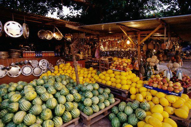 fruit hebben we in overvloed in Costa Rica