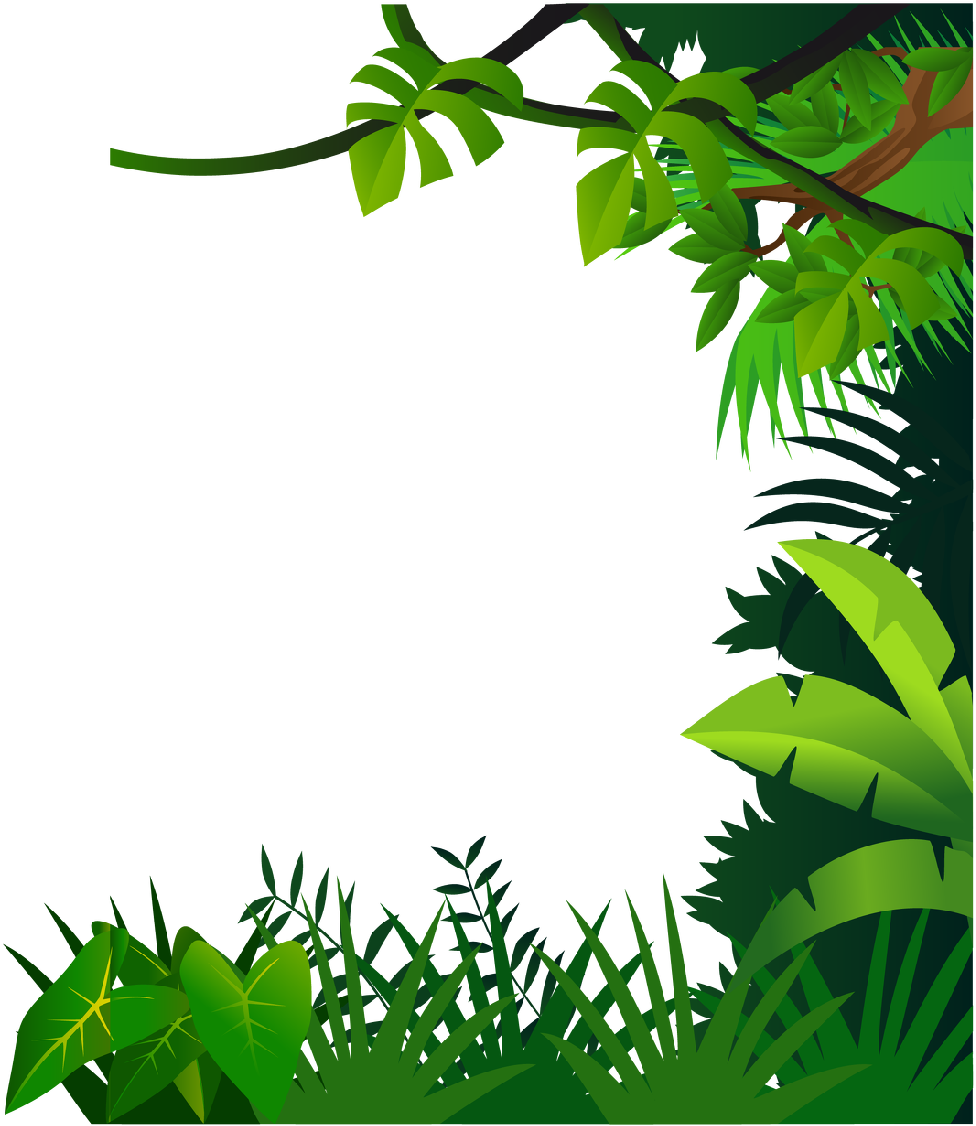 Open Full Size Vegetation Drawing Jungle Plant Jungle Frame Clipart Download Transparent Png Image And Share Seek Jungle Drawing Jungle Flowers Vine Drawing