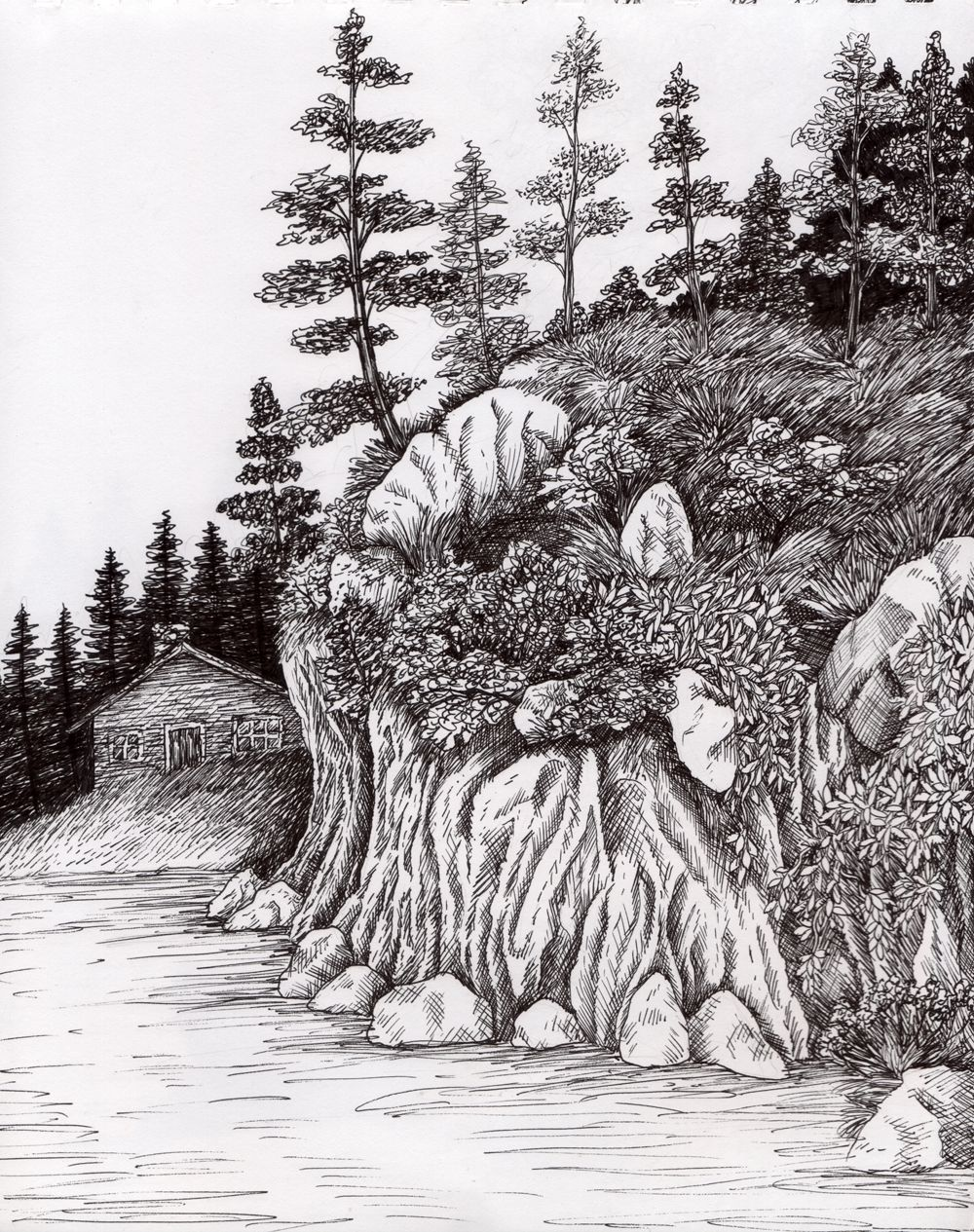 Pen And Ink Drawings Nature Simple Landscape