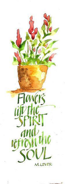 flowers refresh