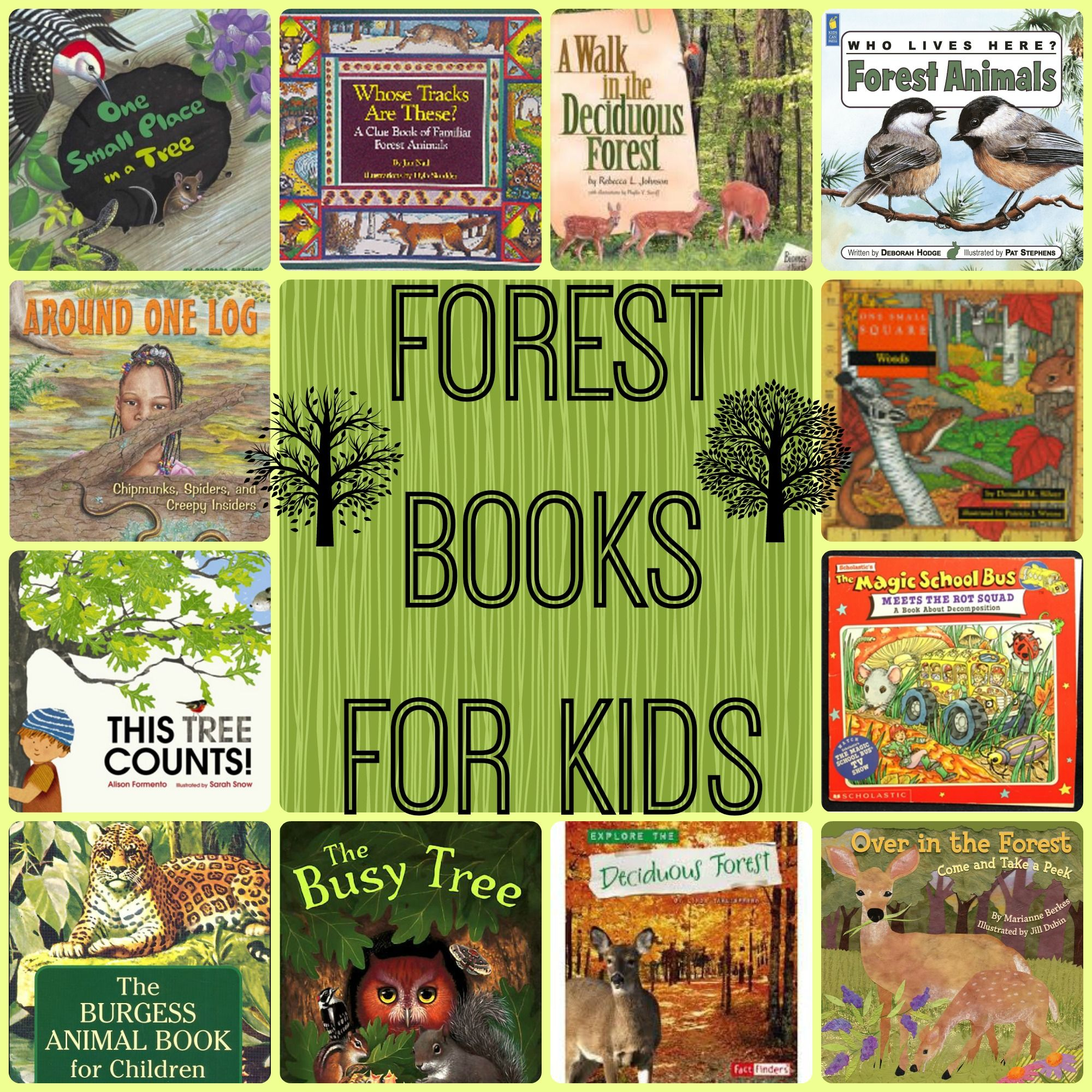 F is for Forest Diorama (Geography Projects from A to Z