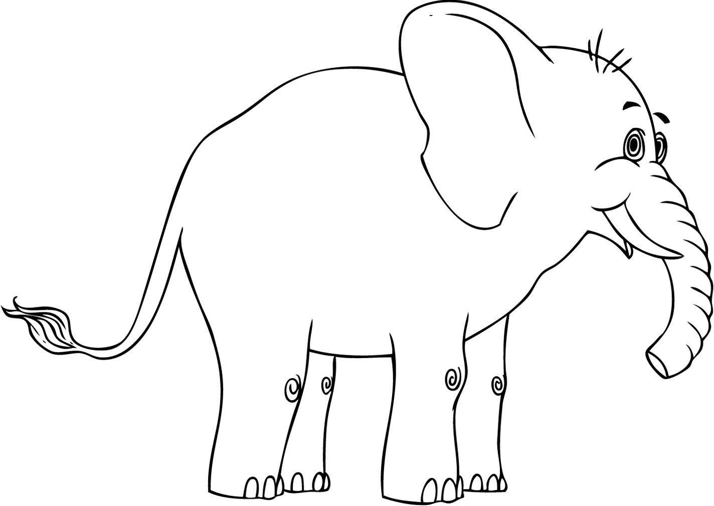 Pin Di Elephants