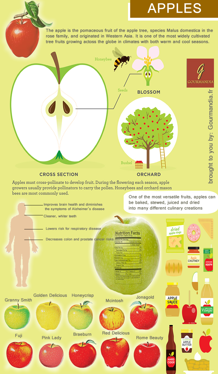 best images about infographics craft beer 17 best images about infographics craft beer healthy lifestyle and fruit company