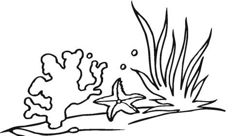 Sea Page Coloring Pages Coral Reef Drawing Coral Reef