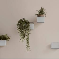 Photo of Planters inside