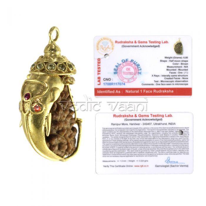 1 Mukhi Rudraksha with Ganesh Cap   Buy Rudraksha Mala, Spiritual