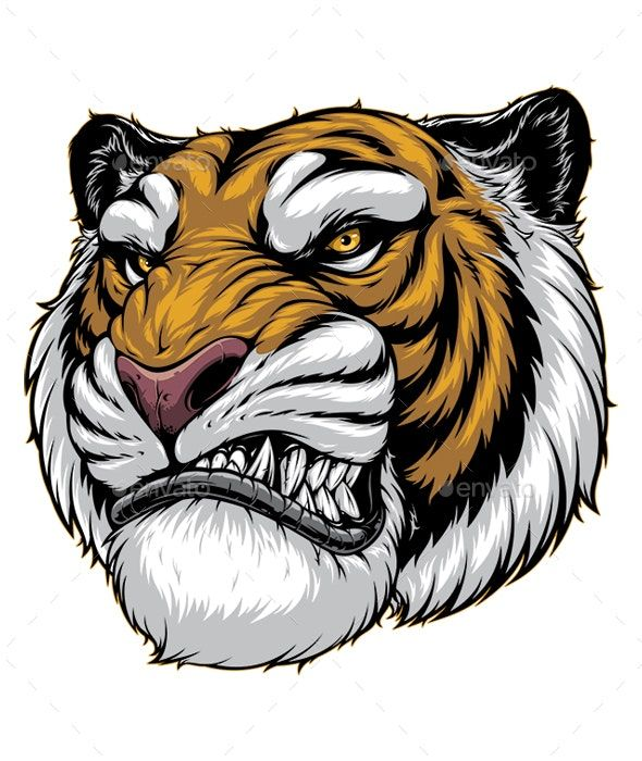 Ferocious Tiger Roars Tiger Roaring Tiger Art Tiger Drawing
