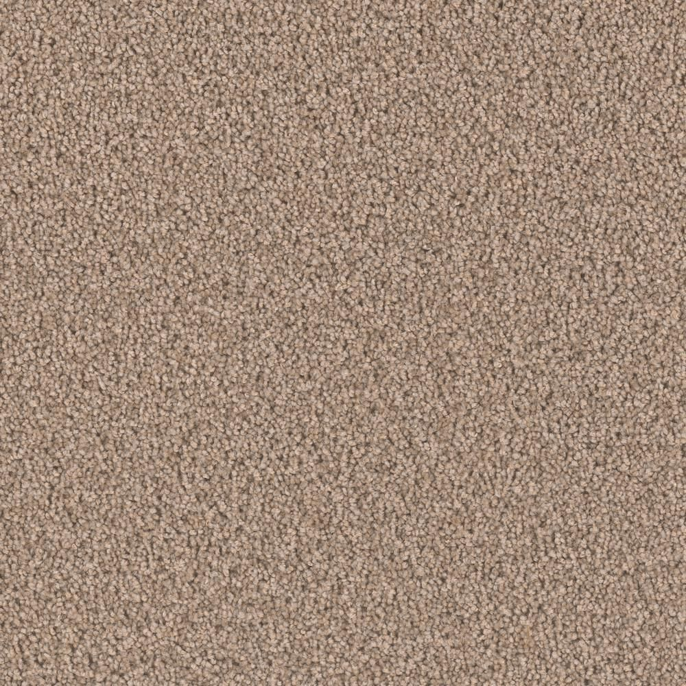 Home Decorators Collection Carpet Sample Delicate Flower Color Airy Texture 8 In X 8 In Carpet Samples Textured Carpet Carpet Colors