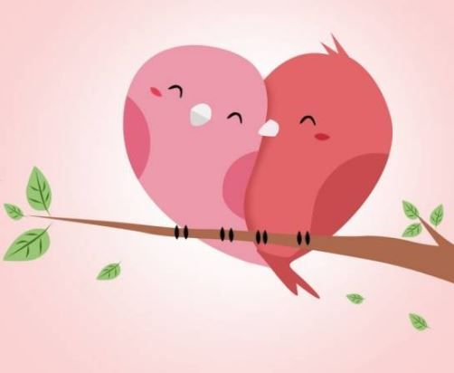 rochester online dating