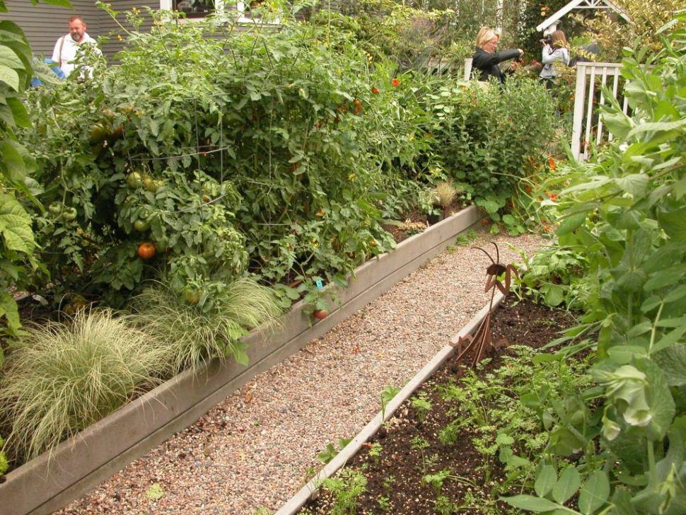 Backyard9 Decoration Vegetable Gardening Ideas In Small Spaces Garden For Space
