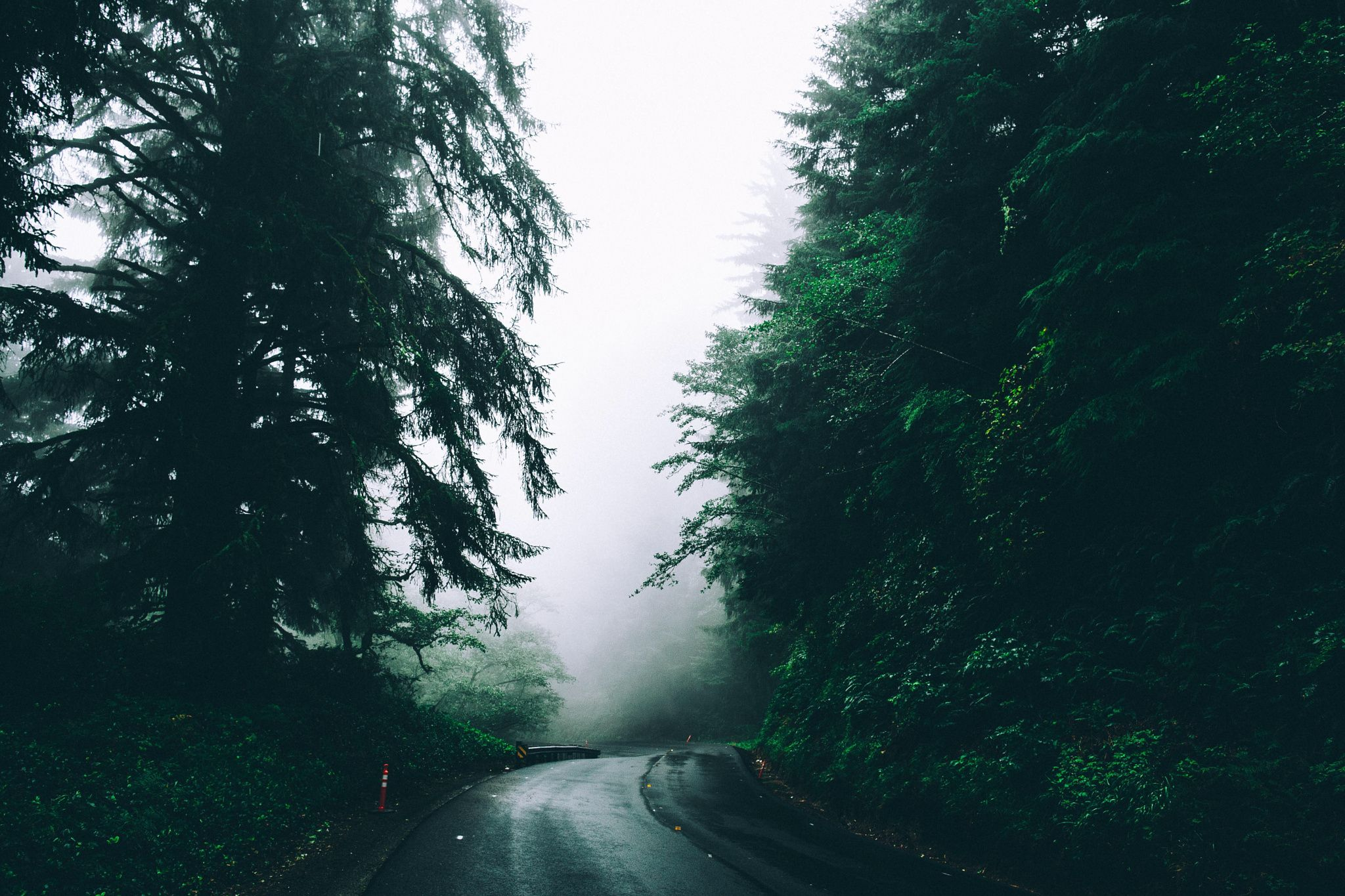 Foggy mornings by Ryan Millier on 500px