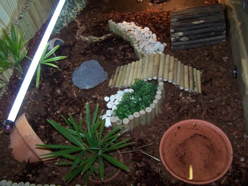 INDOOR enclosures Page 16 Reptile Forums (With images